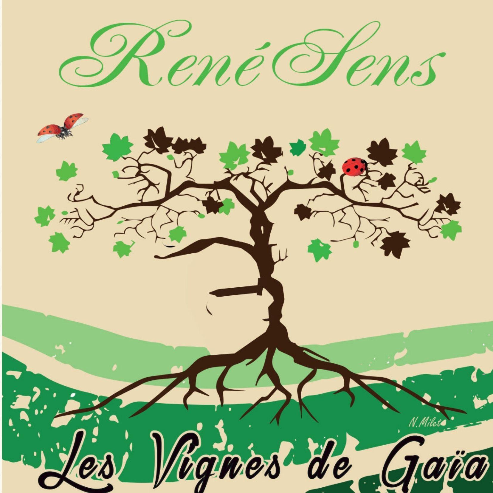 vin-rouge-naturel-bio-renesens-2020-domaine-les-vignes-de-gaia-vente-en-ligne